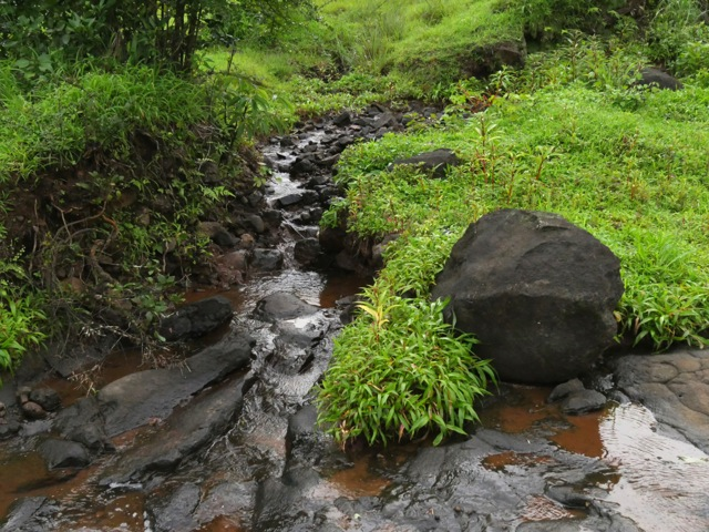 spring water in rainy season